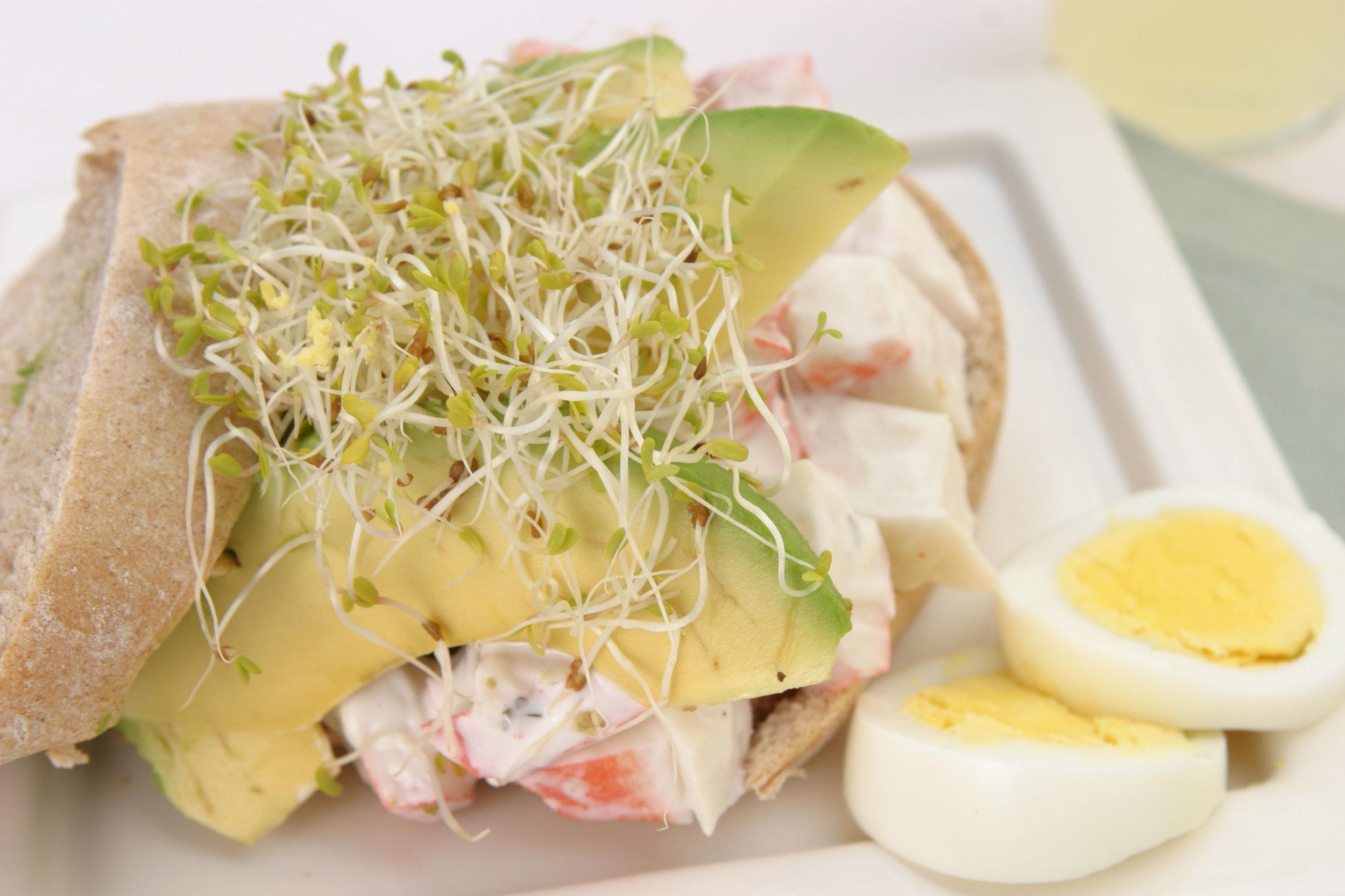 Alfalfa Sprouts Sandwich