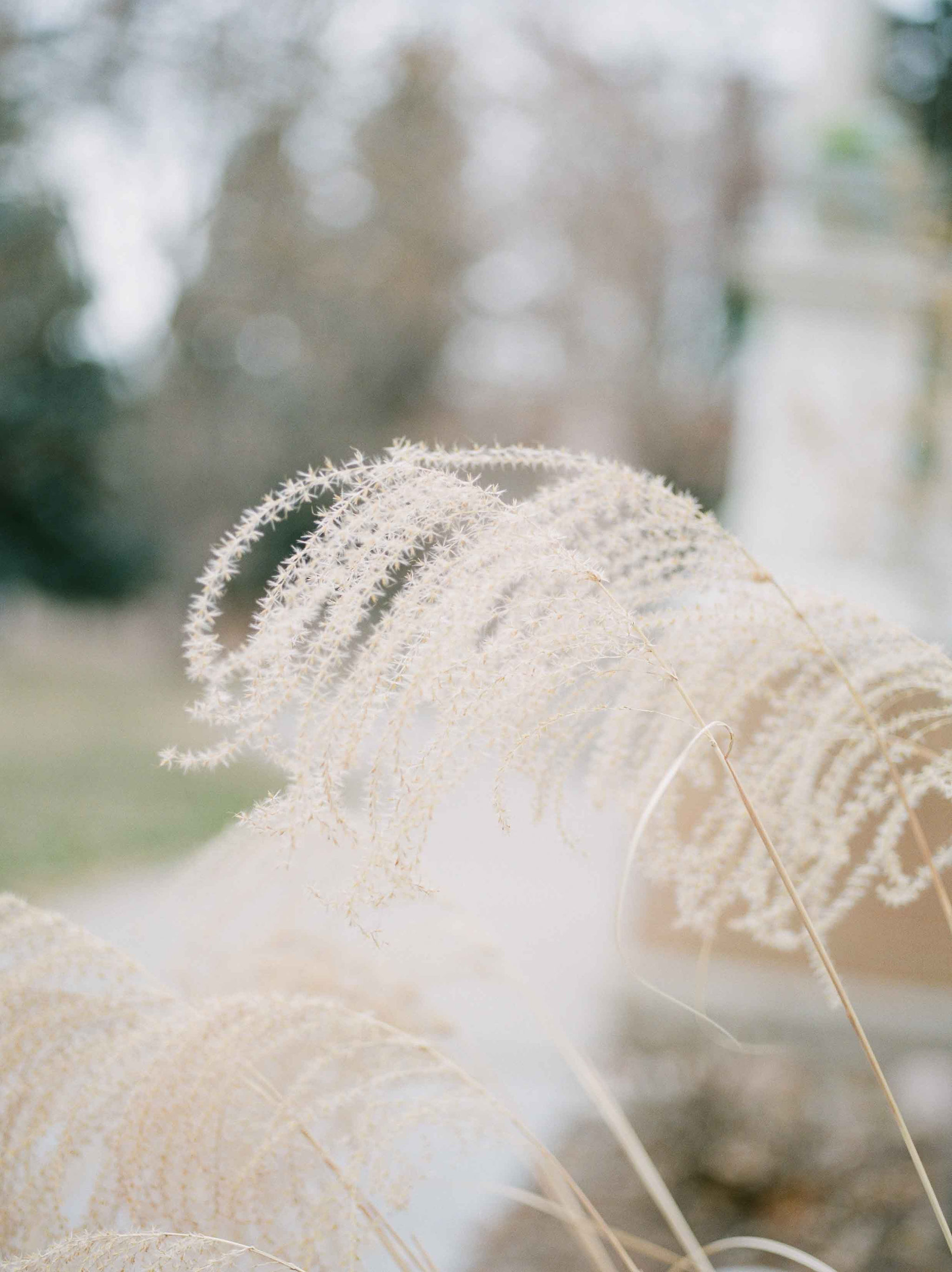 Sarah Porter Photography  Featured on Magnolia Rouge
