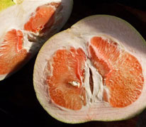 Chandler Pommelo - Chandler Pomelos are a hybrid selection released in 1961 with a sweet, pleasant flavor. The skin is yellow with a slight blush. The flesh is pink or red, and sweet. The fruits are ripe in the winter months and produce best in the sunny lowlands.