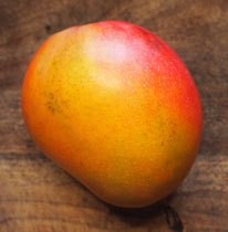 Rapoza - Rapoza is a fabulous Hawaii selection that is a medium sized, vigorous, heavy producing tree with excellent fruit quality that range between 15 and 30 ounces. The ripe skin is yellow with a red or purple blush. The fruit has a thin seed, is fibreless and bears annually in July and August.