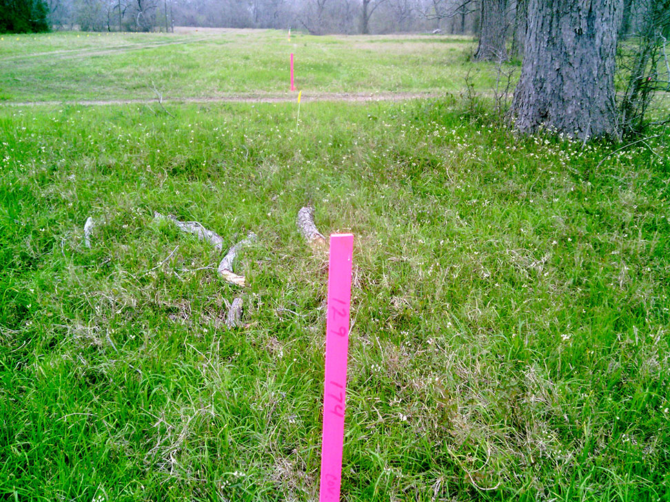 boardwalk_129_pipeline_right_of_way_stake_survey.jpg