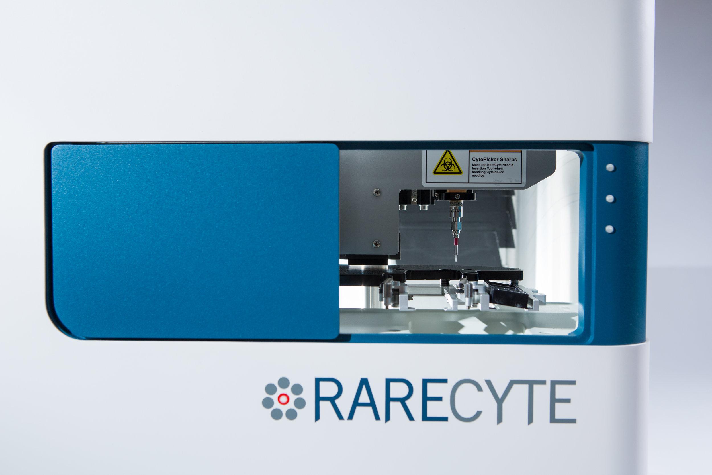 Rarectye-02.jpg