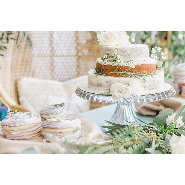 Honey cornbread cake dressed w/ honey citrus buttercream, white rose and waxflower. . •• @alex_isabel_photography alex_isabel_photography alex_isabel_photography and @saramichelleweddings making all this look secret garden whimsy beautiful.