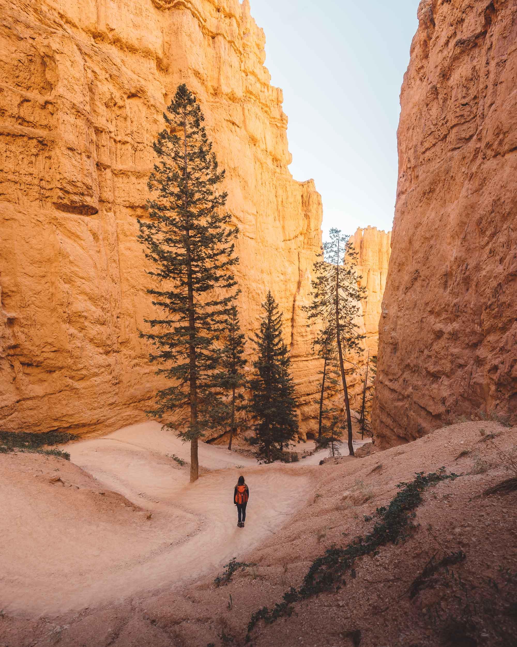 Bryce Canyon-7305490.jpg