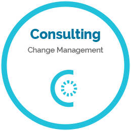 Consulting - change management