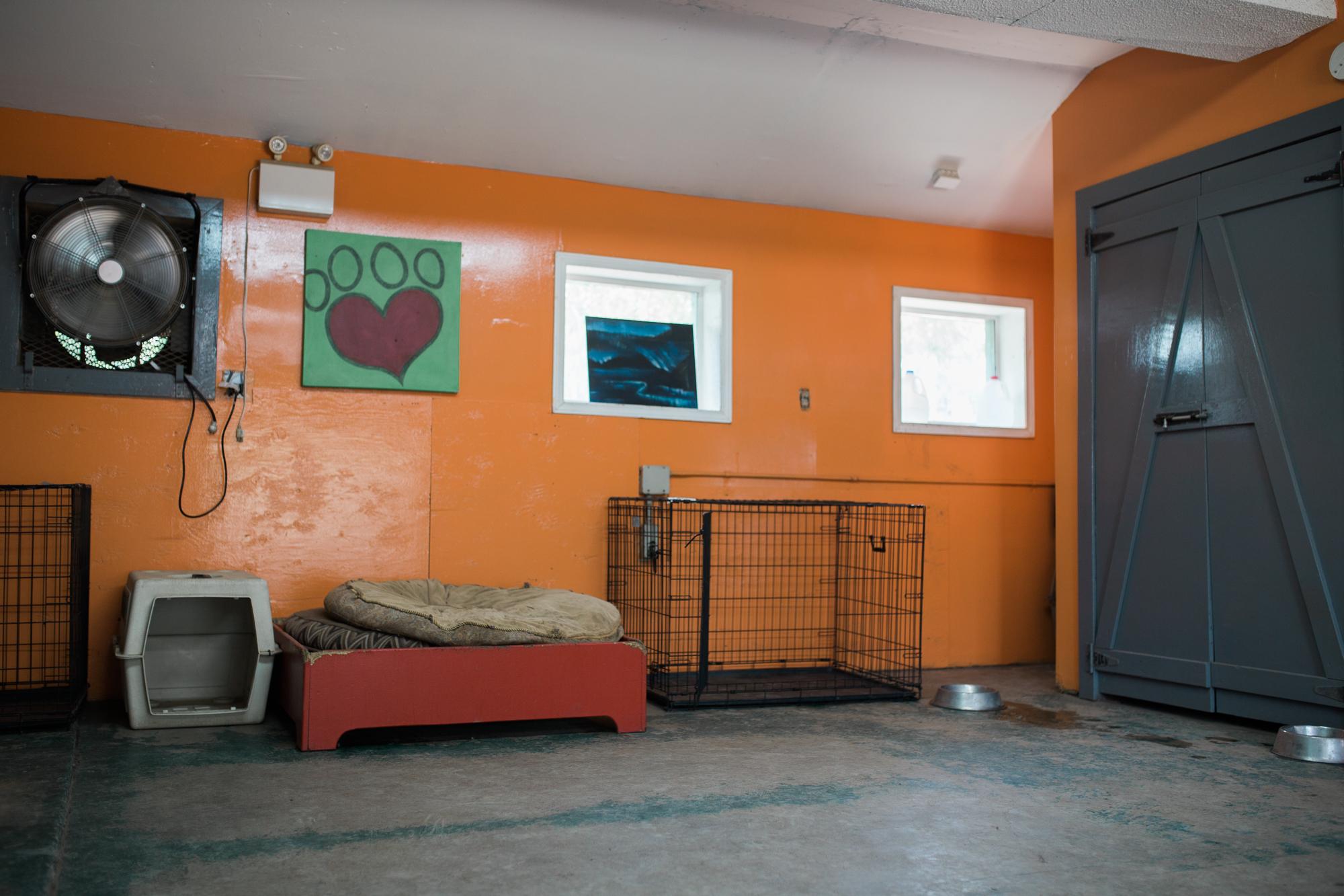 Barking-Good-Facility-2.jpg