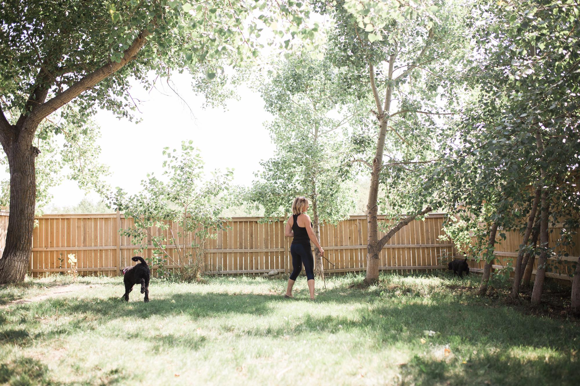Barking-Good-Facility-14.jpg