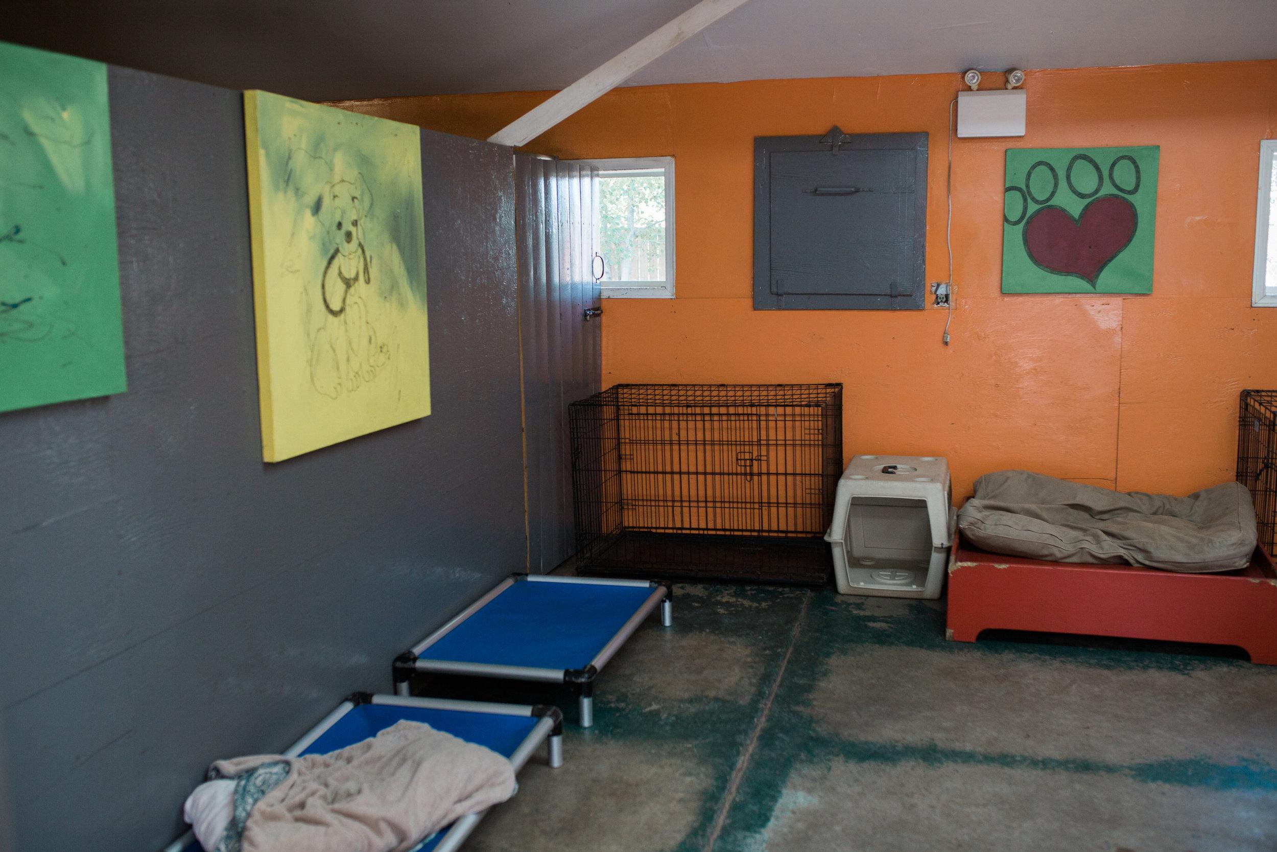 BarkingGood-Facility-35.jpg