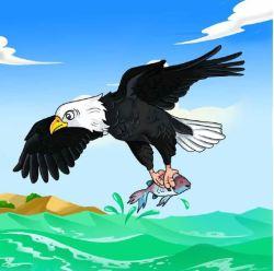 Eagle-with-fish_WDGE.jpg