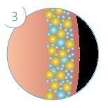 In den darauffolgenden Wochen werden die abgestorbenen Fettzellen auf natürliche Weise vom Körper abtransportiert.