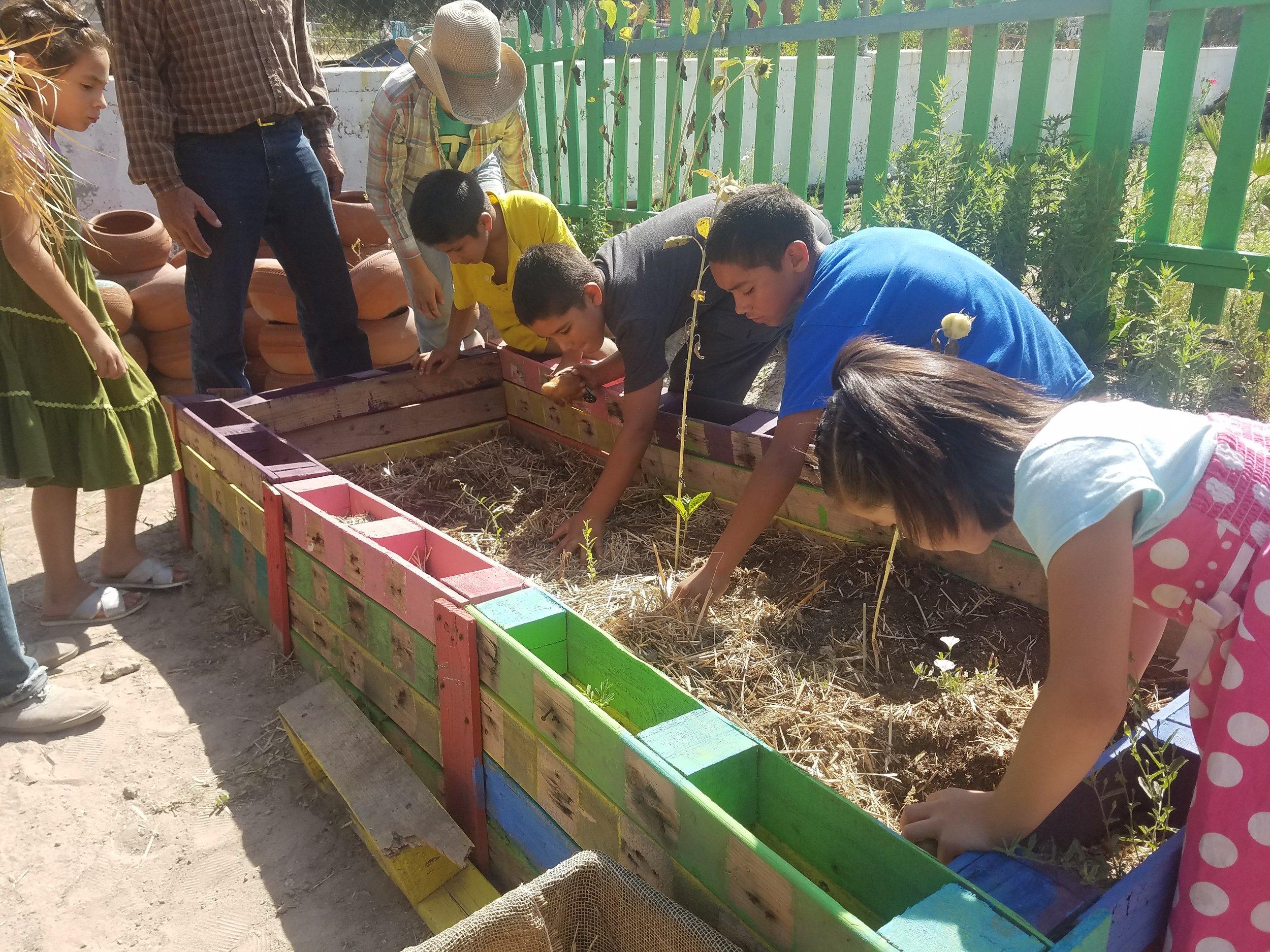 Garden-Based Learning Program - Teaching Sustainable Nutrition