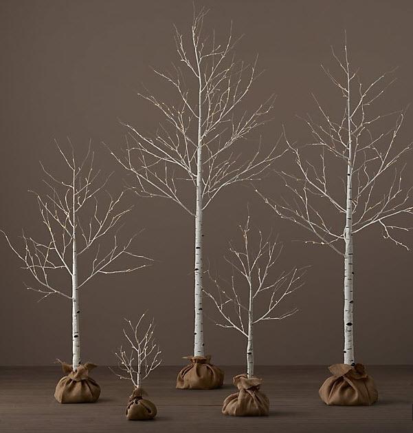 birch tree and fairy lights.jpg