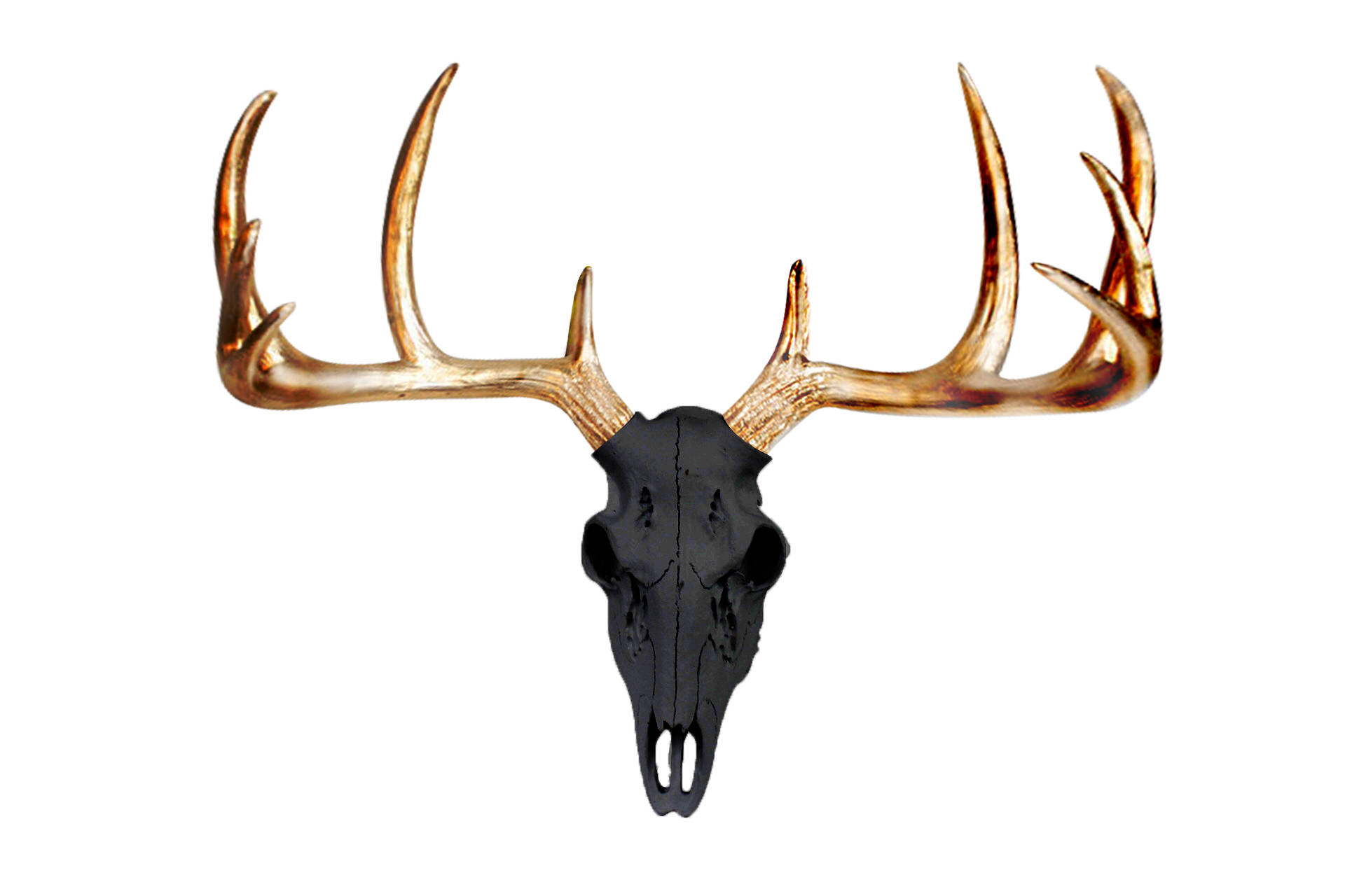 Etsty - Mini Deer Skull Black by Wall Charmers™
