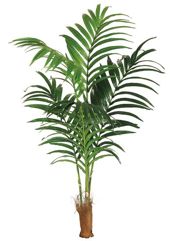 Amazon - ONE 7' Artificial Tropical Kentia Palm Tree with No Pot
