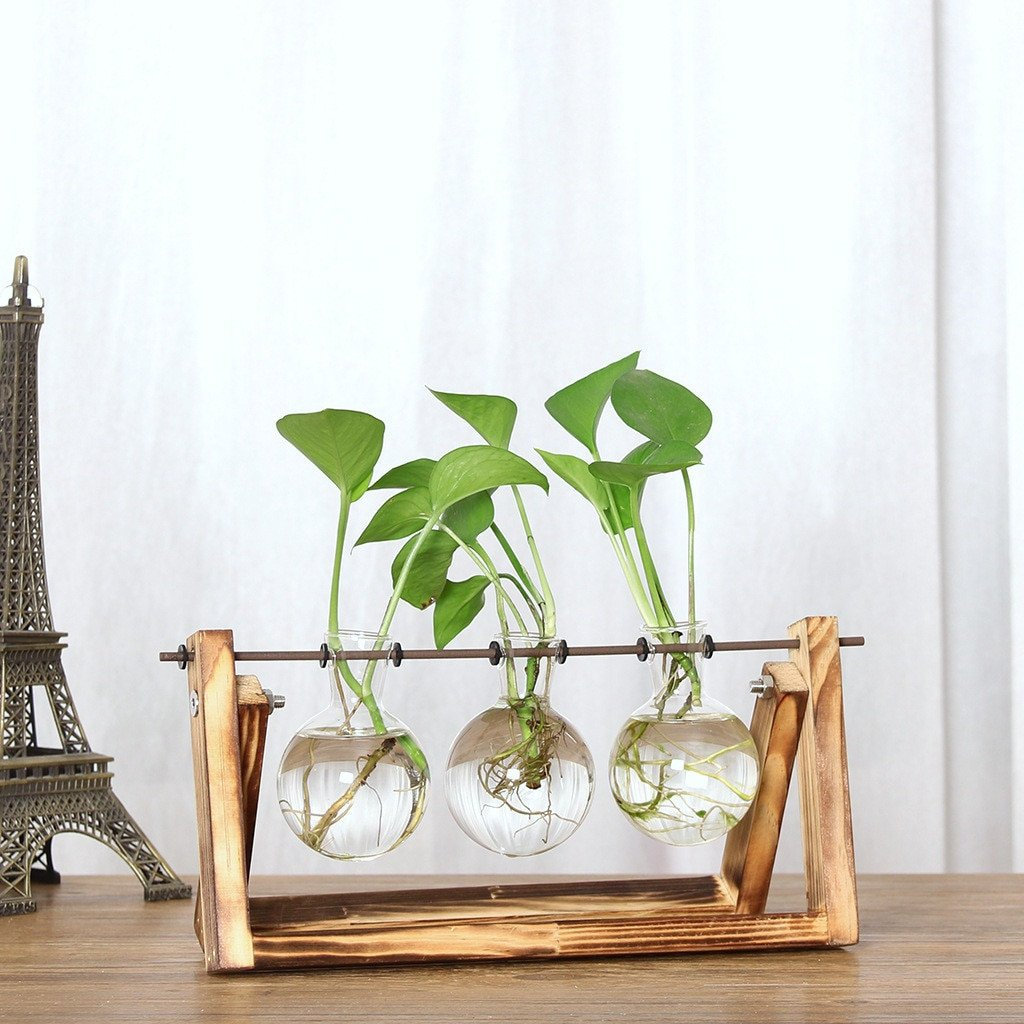 Wood and Glass Terrarium Planter - Water Plant Vase, Wood Stand Pot