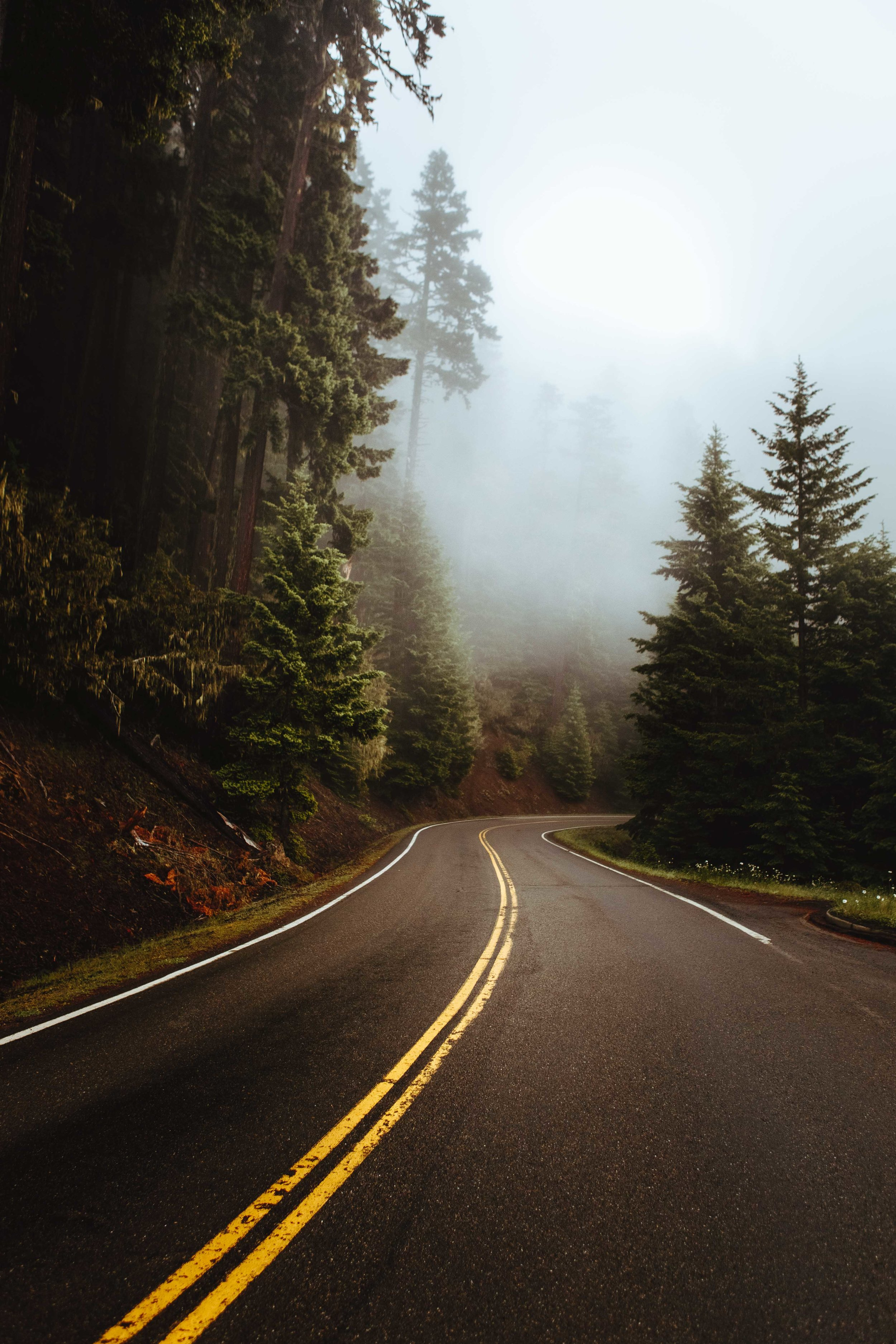 pacific_northwest_photography