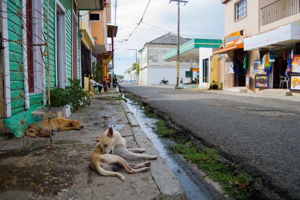 Sousa Dominican Republic