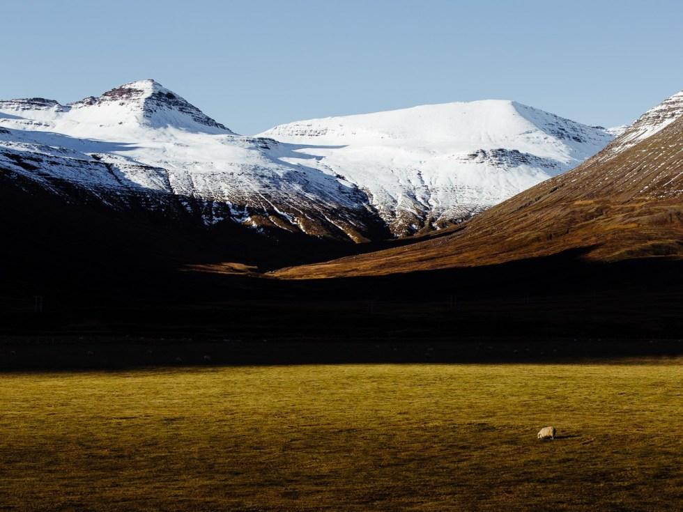 Between Stöðvarfjörður and Mývatn lake