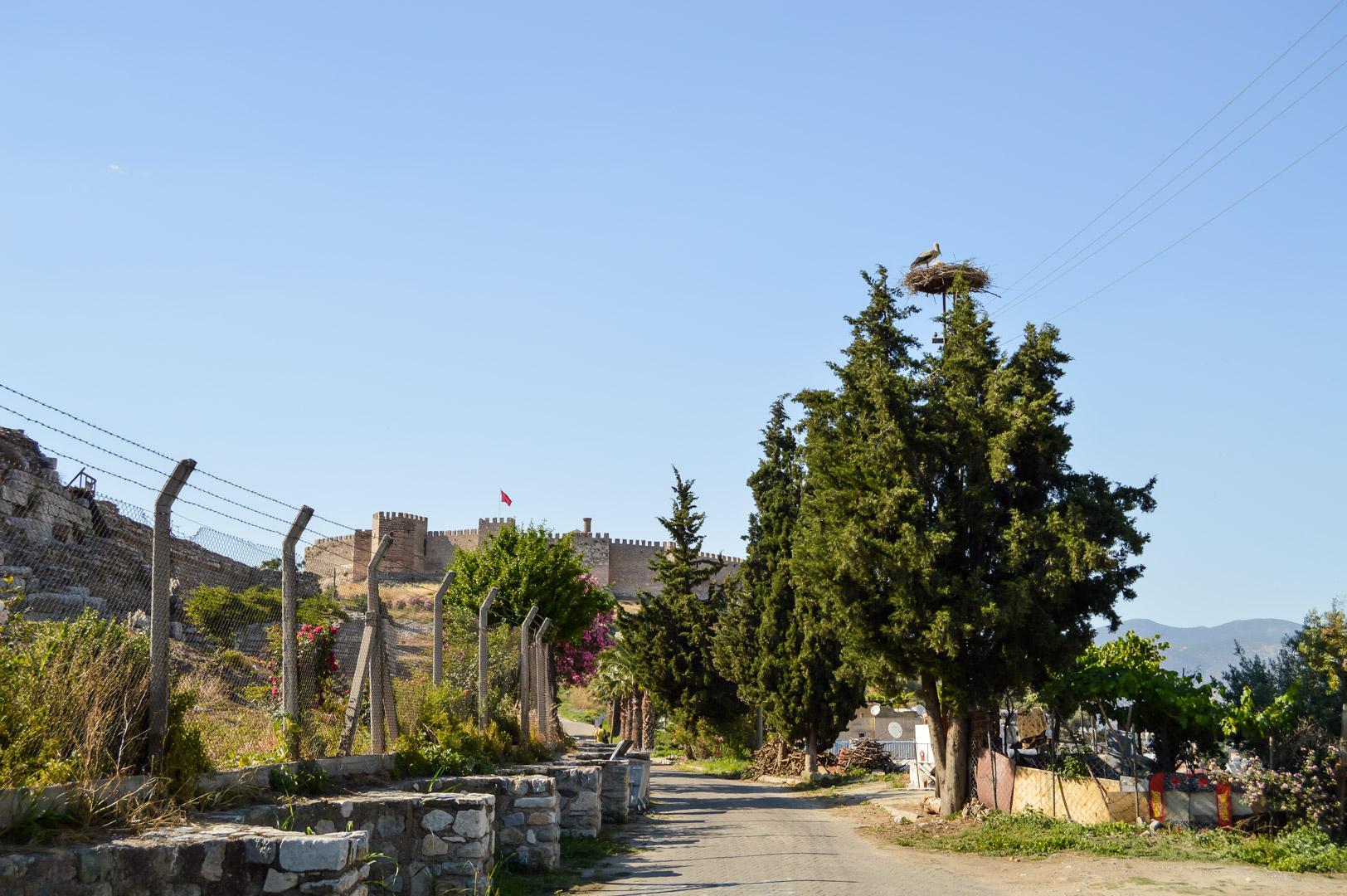 Ayasuluk Citadel Roman Architecture Selçuk Fortress Blue Sky Turkey