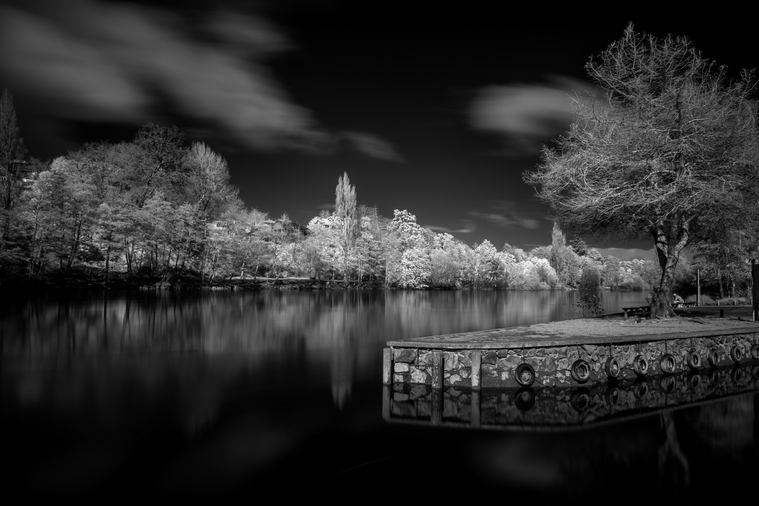 Black and White Infrared Image Lake Dock Trees