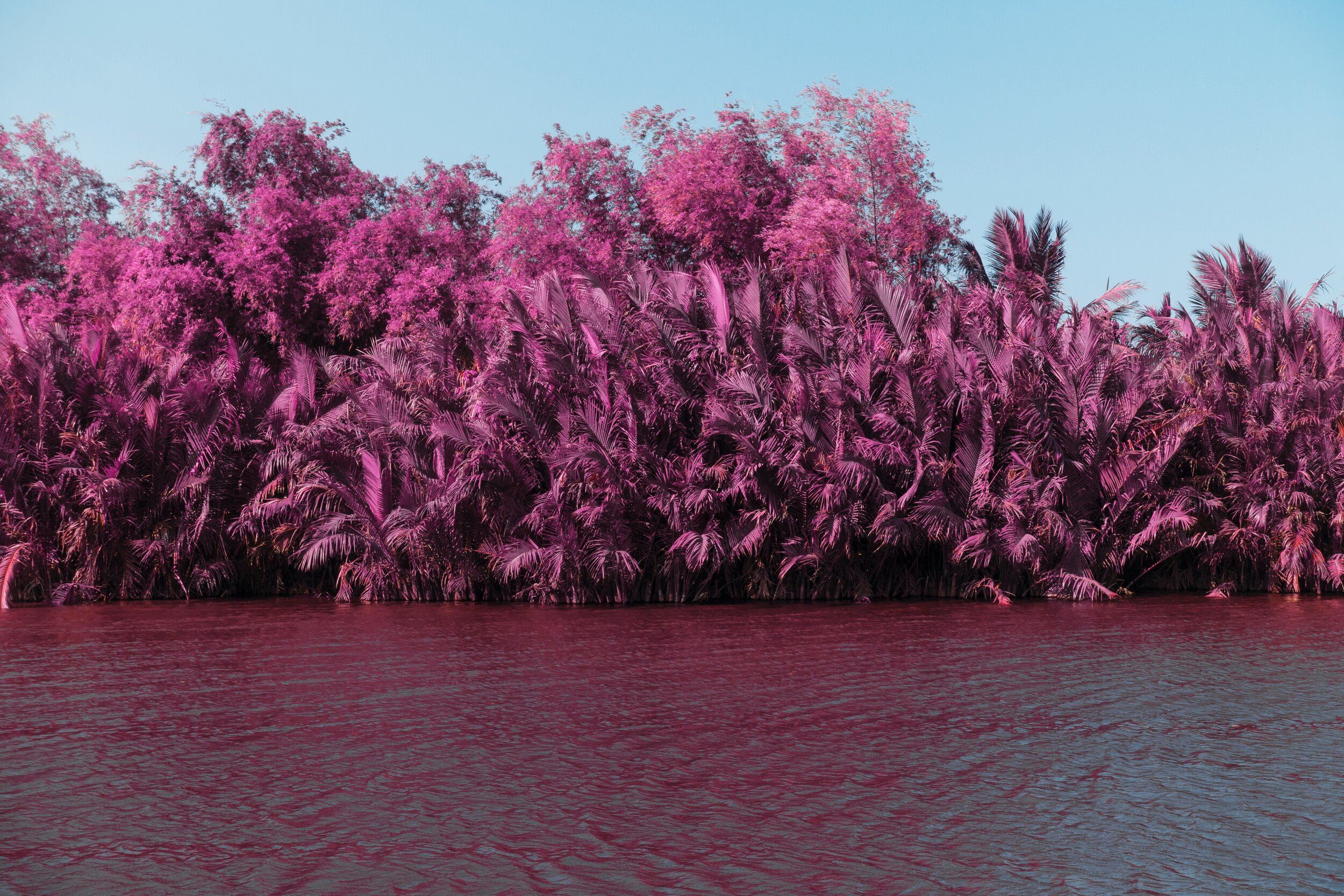 Infrared Pink Trees Lake River