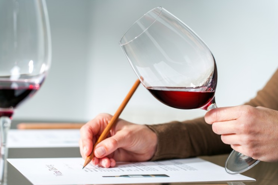 cursos de vinos.jpg