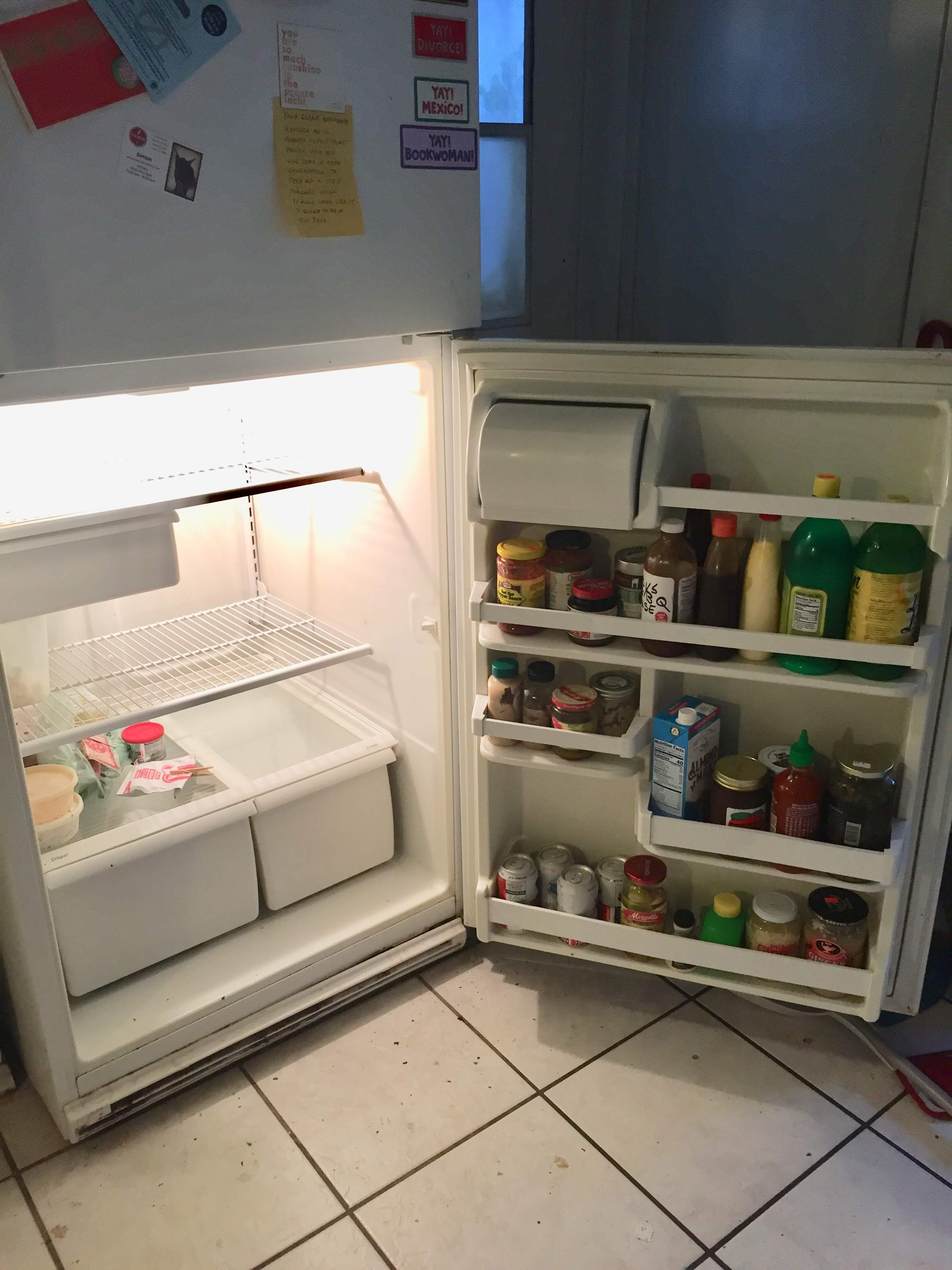 Consider yourself lucky that I forgot to take a before picture of the fridge.