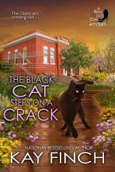 blackcatsteps.jpg