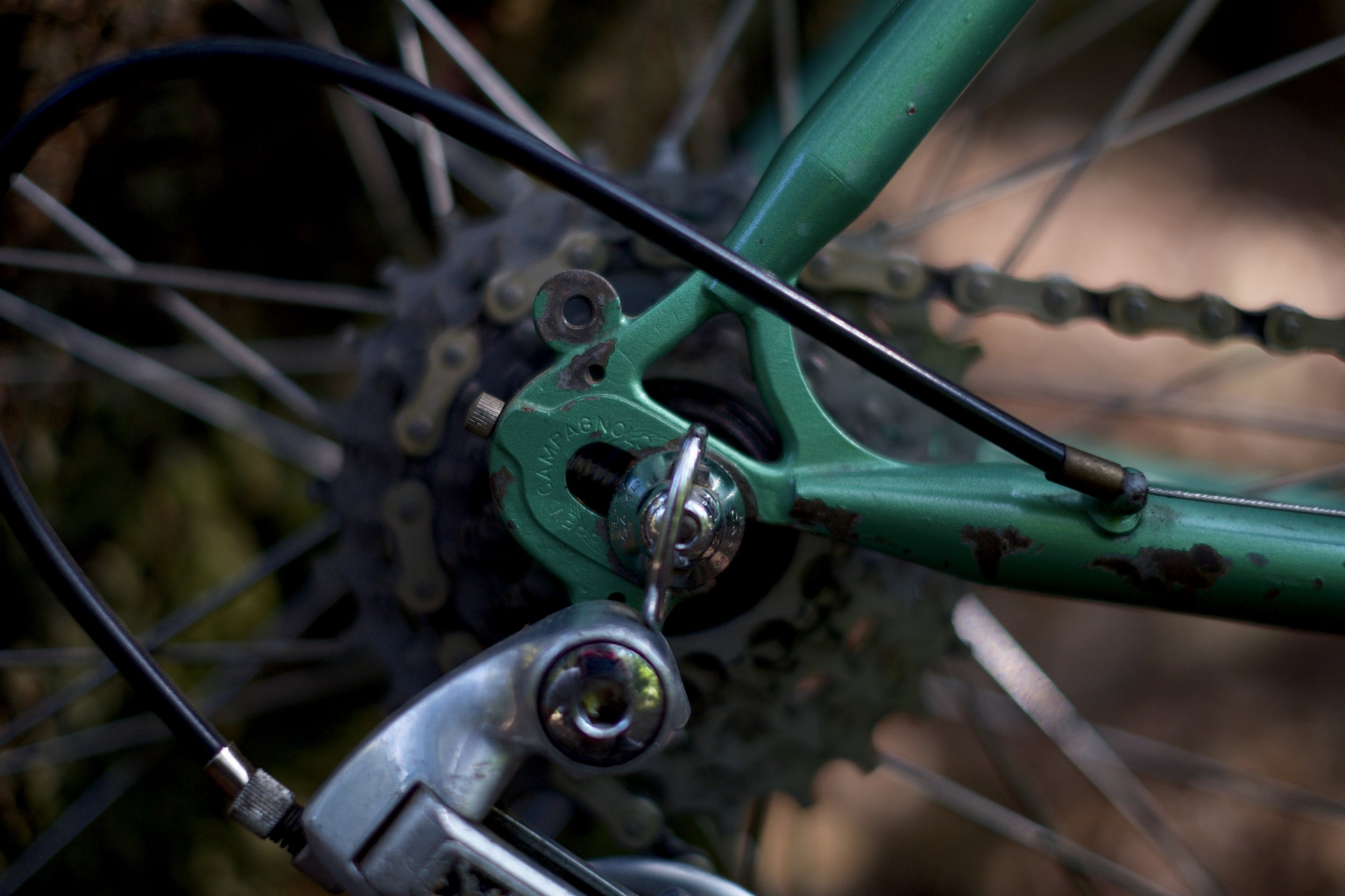 Campagnolo drop outs