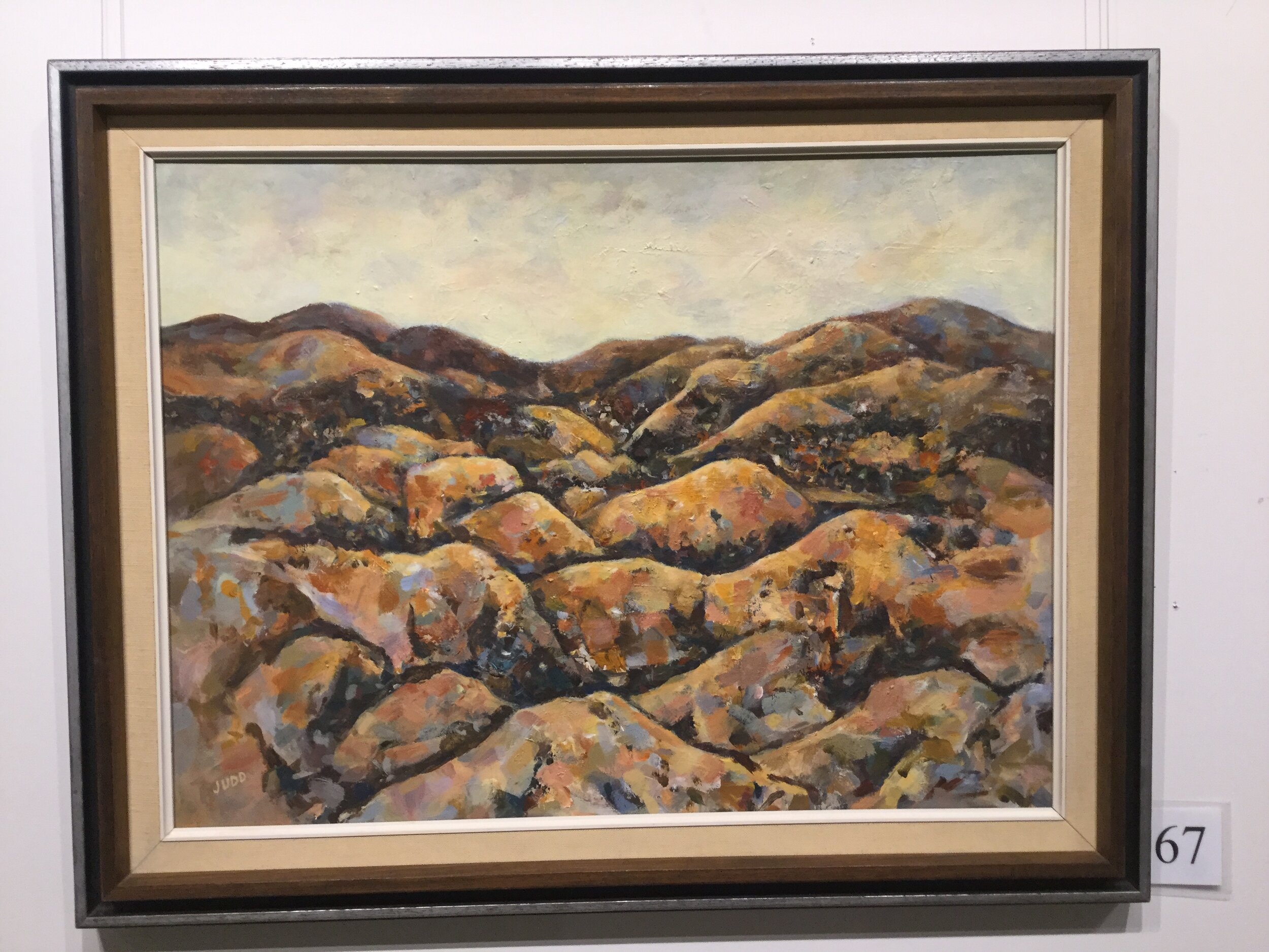 Wellers Inn Commended Robyn Judd West Coast Landscape