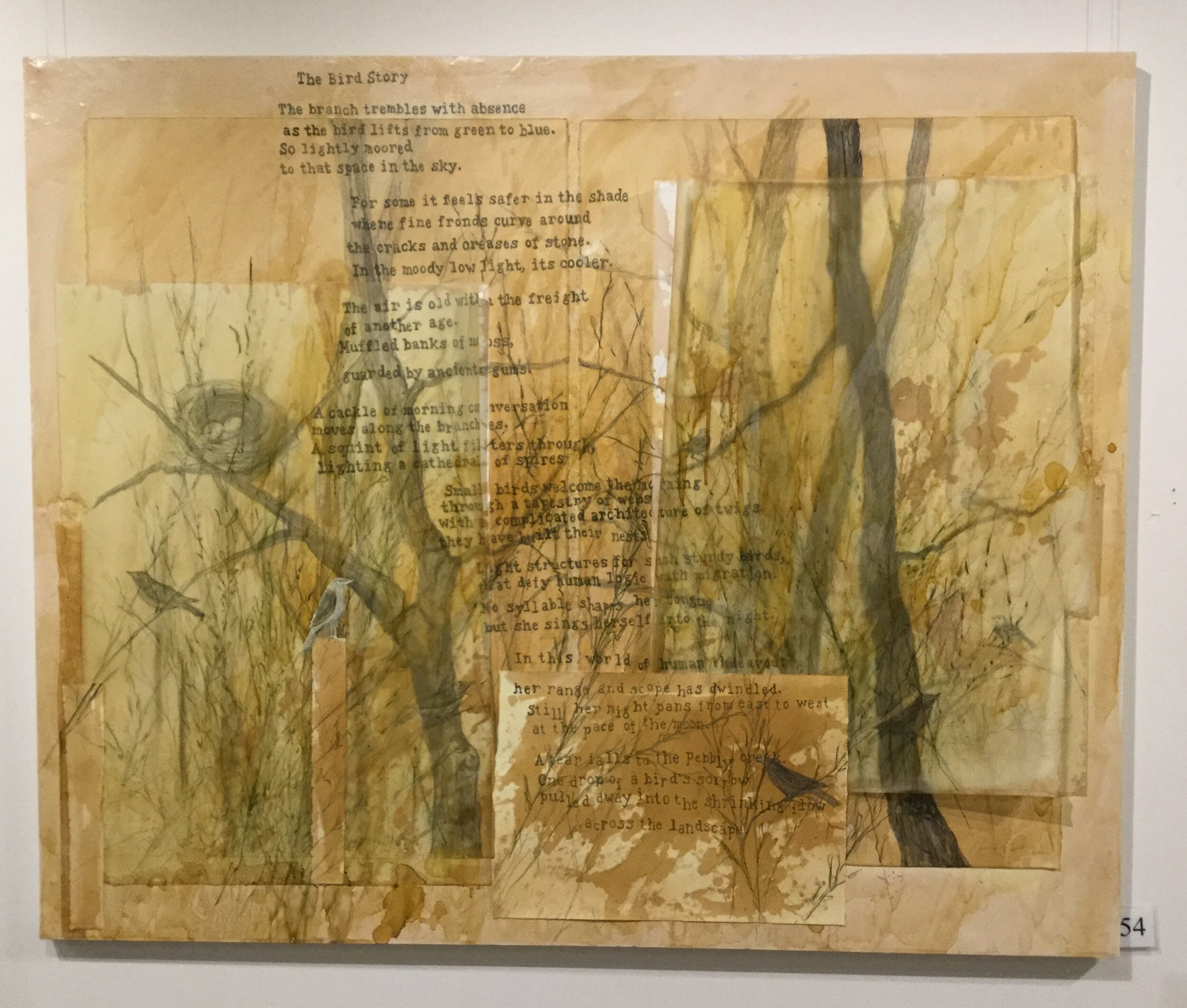 Sassafras Farms Highly Commended Jenifer Frost Drawing on Nature
