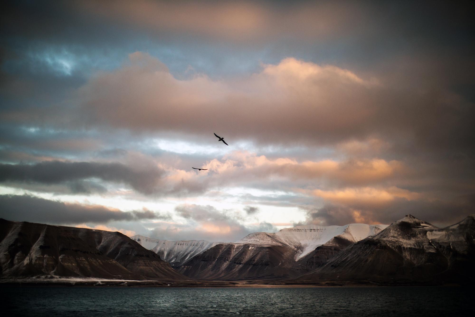 Svalbard september natur-71.jpg
