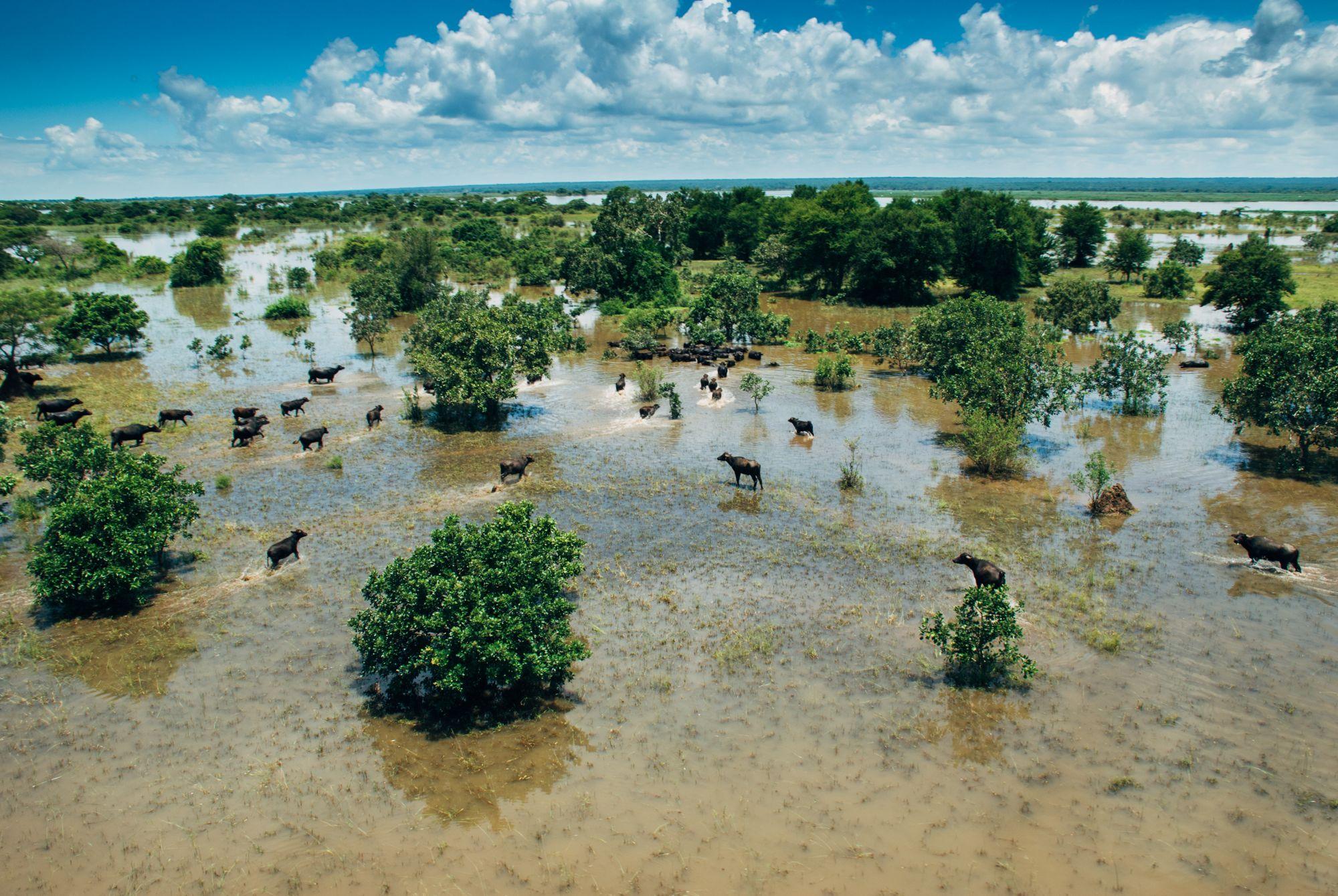 Floods 2008-105.jpg