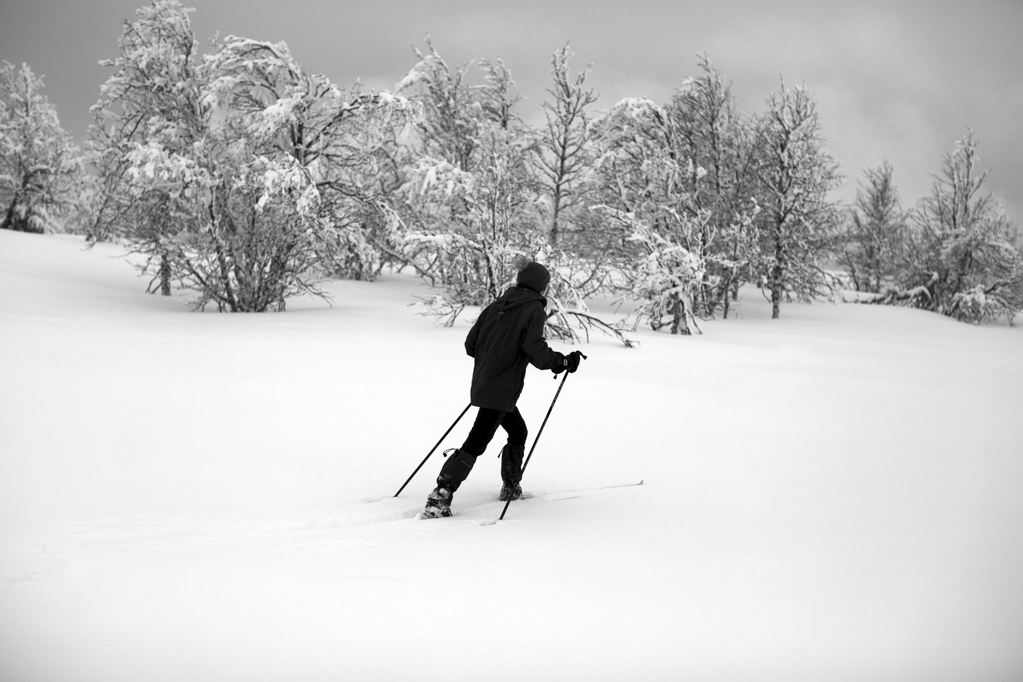 på ski.jpg