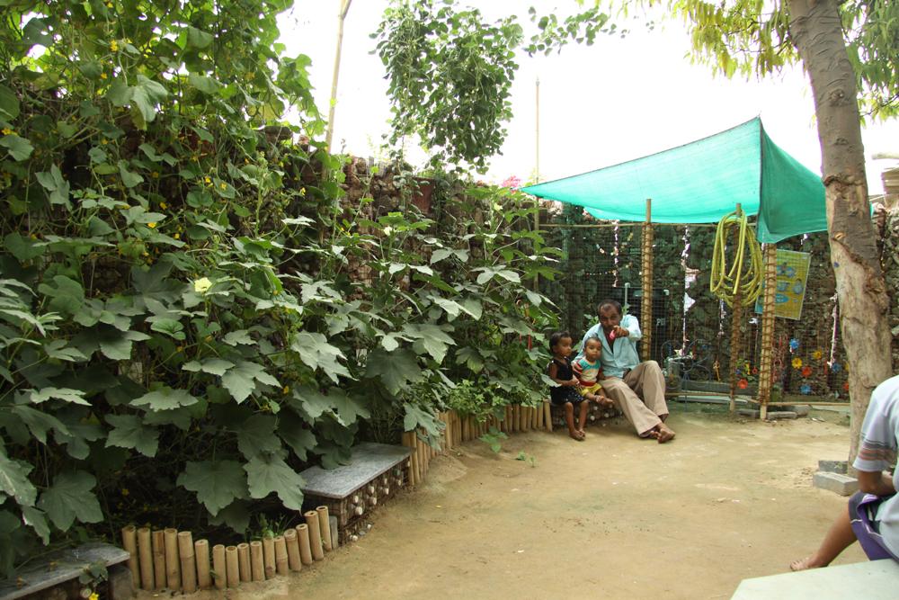 11_Bholu 11 garden.jpg