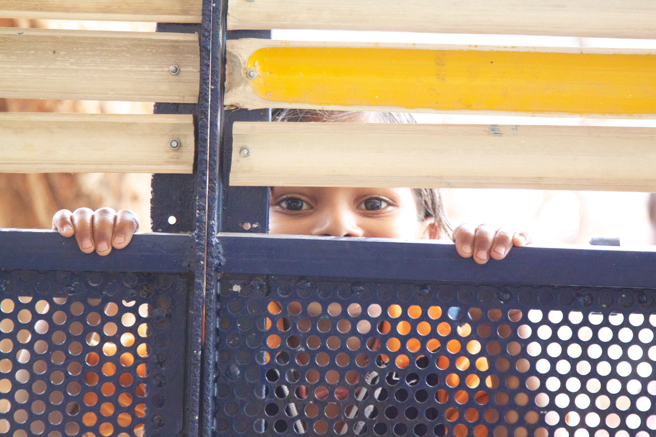 13_Bholu 11 doors.jpg