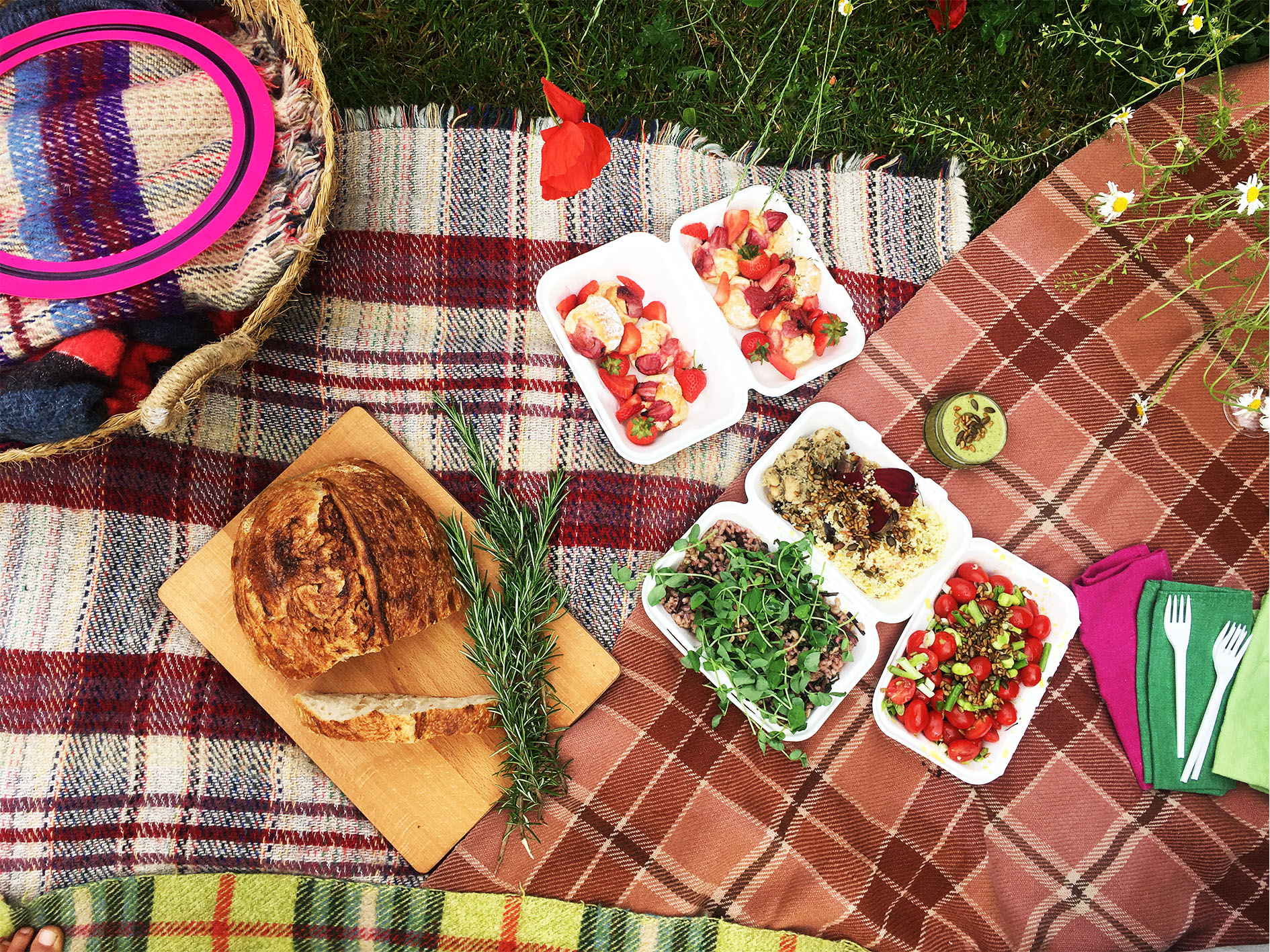 Pea Shoot picnic at Asthall adjusted.jpg