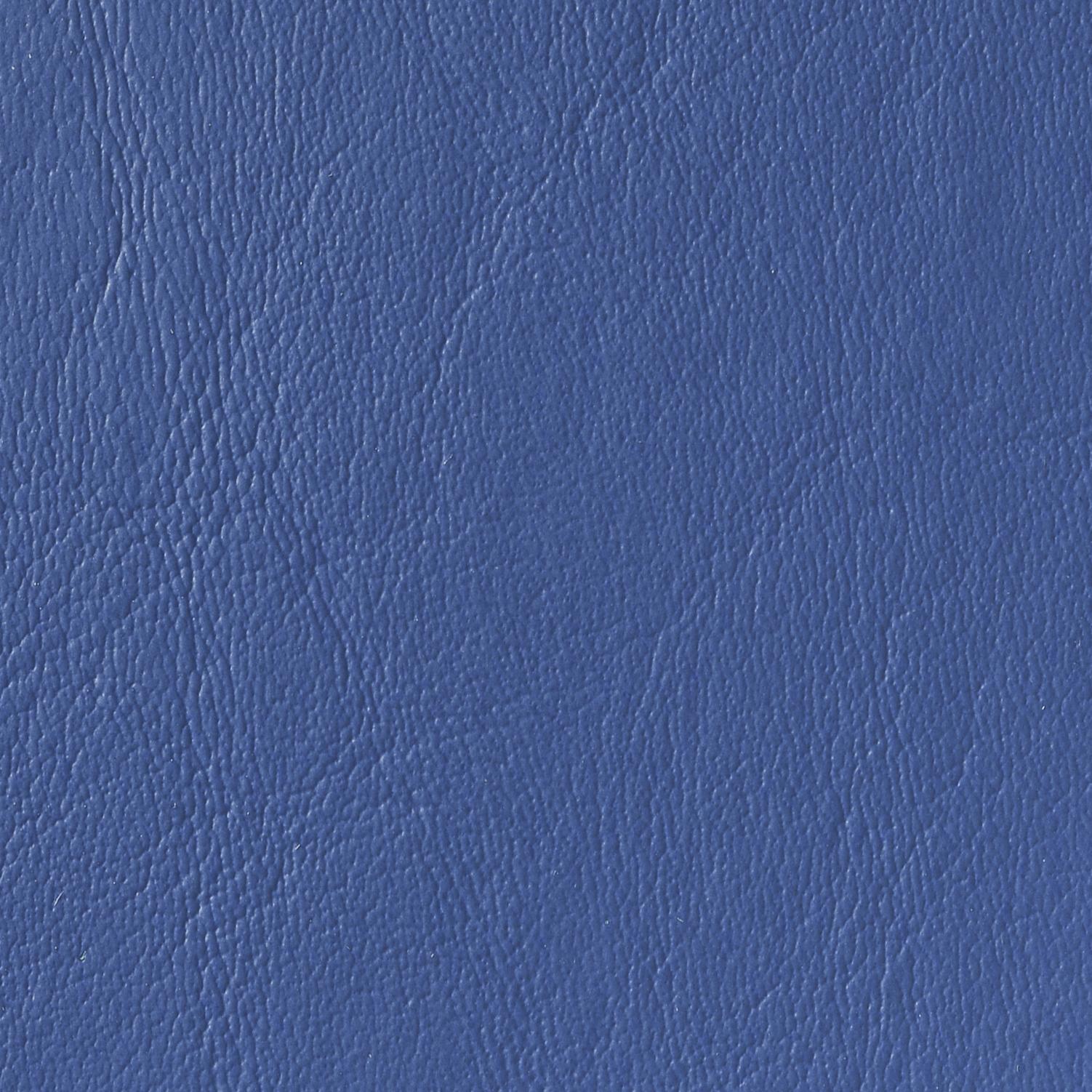 COASTAL BLUE   STA-19