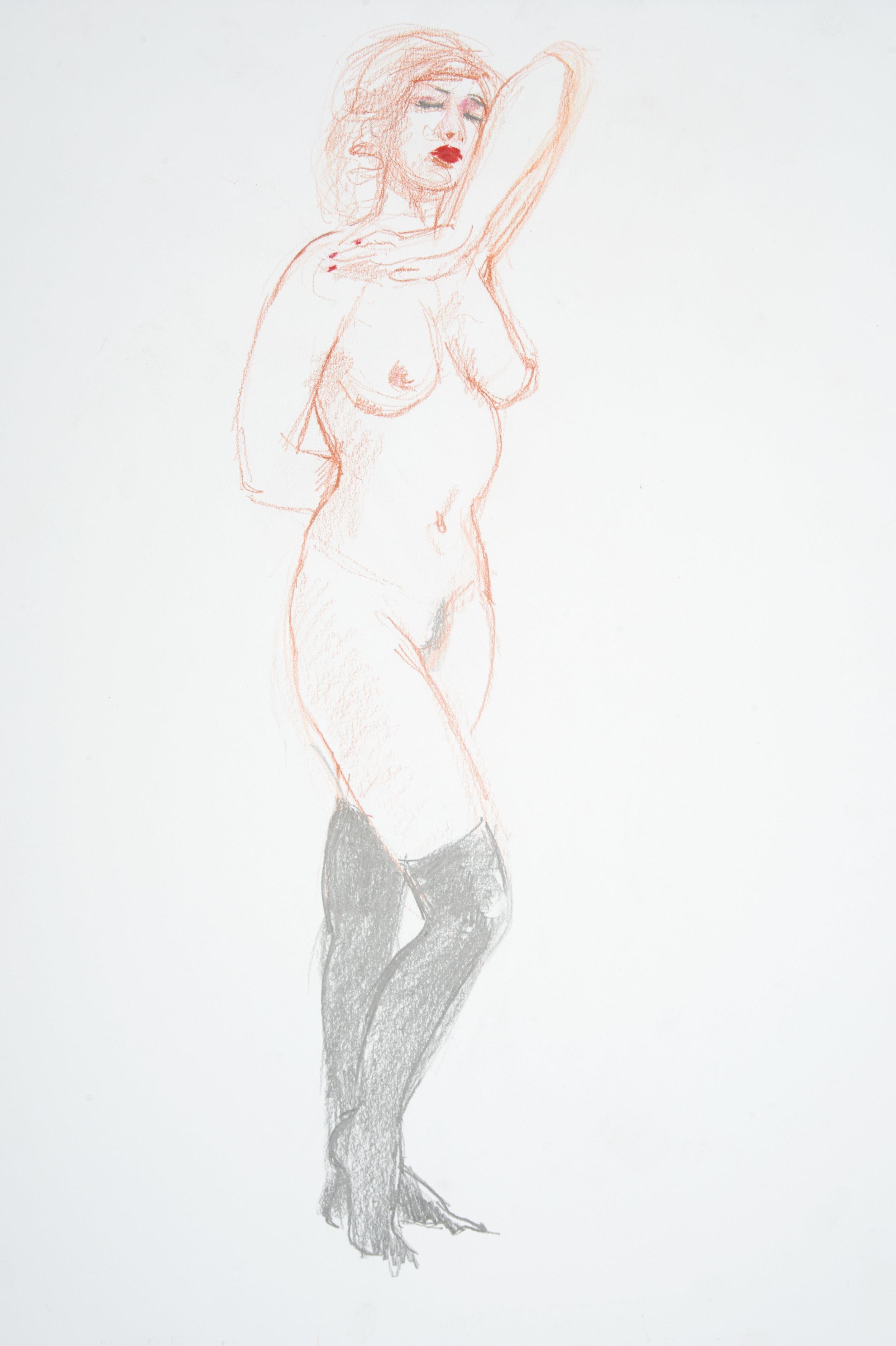 conte, graphite, coloured pastel on paper  A2