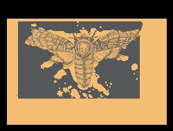 Deaths-head hawkmoth illustration - sRGB@0,5x.png
