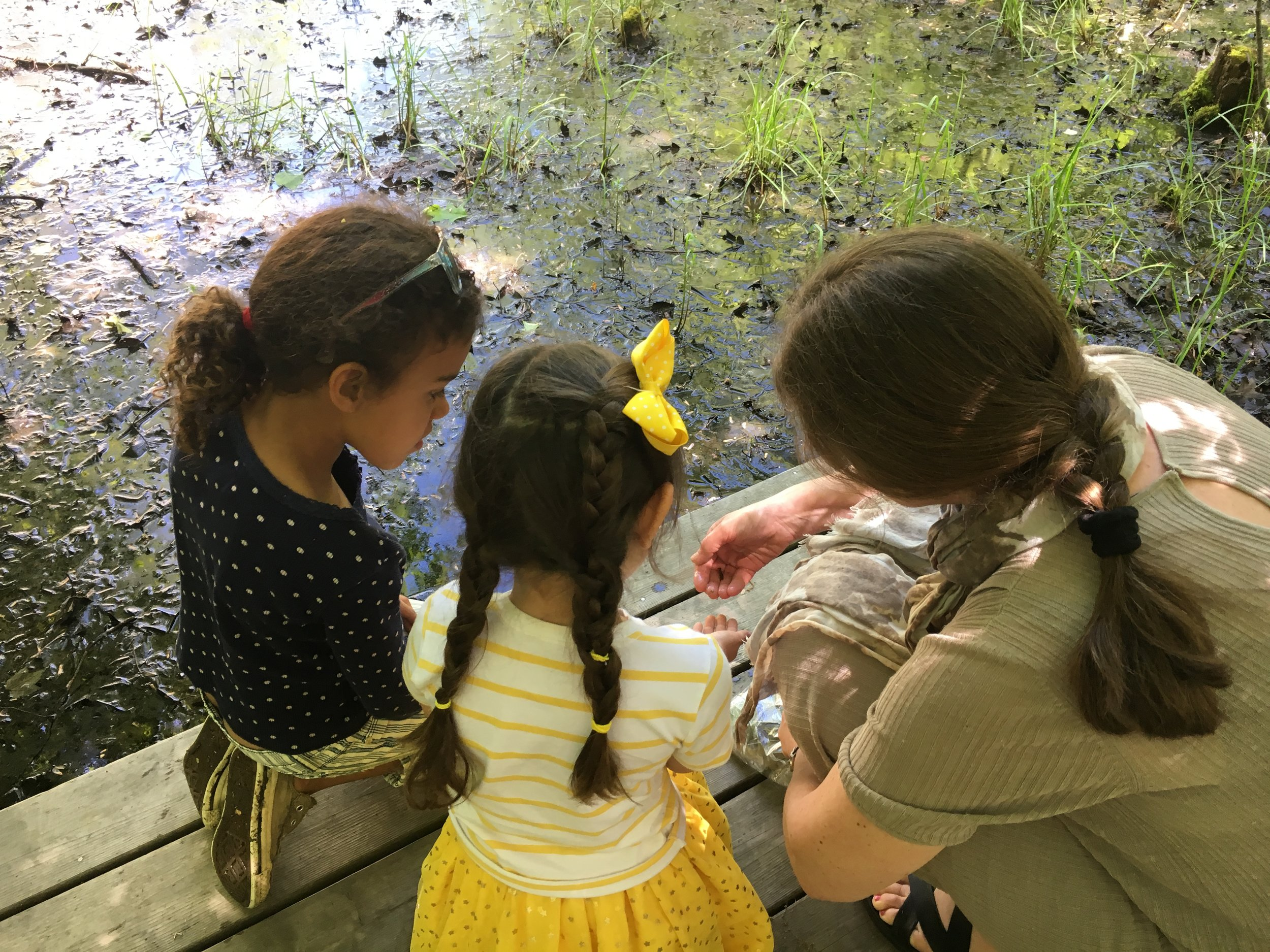 Head of School, Alica, spends time at the vernal pool with some students.