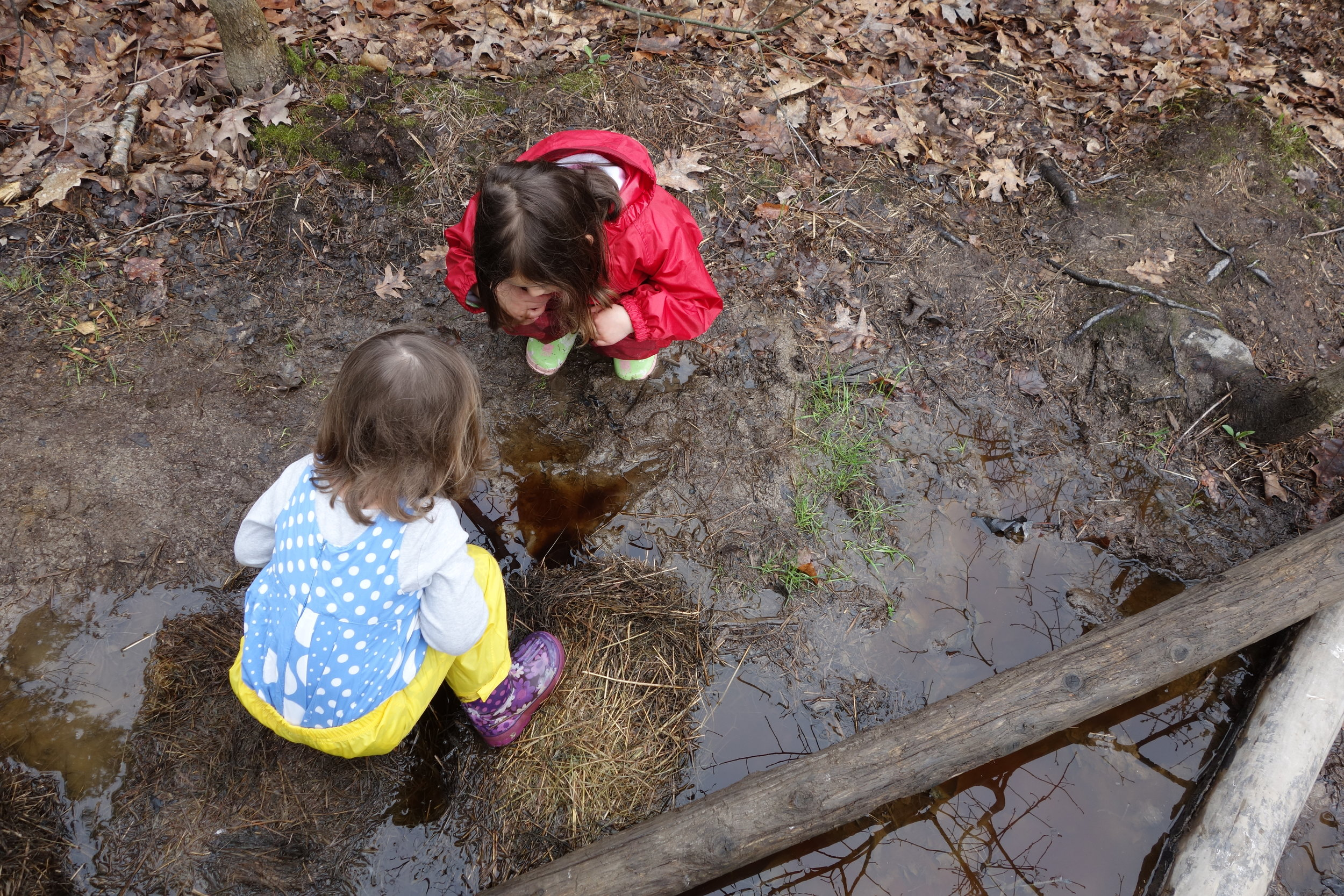 In the spring you can usually find a good mud hole on our school playground.