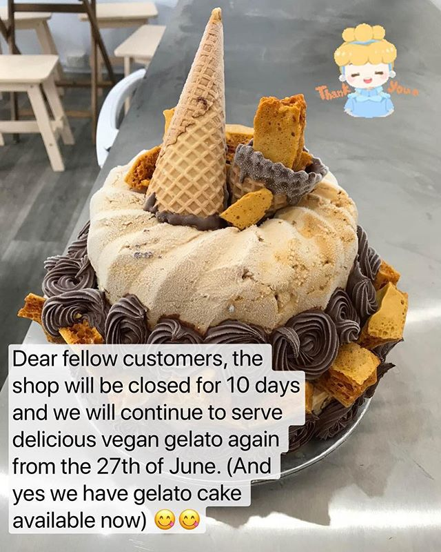 #veganicecream #veganicecreamcake #nondairyicecream #nondairygelato #nondairygelatocake #vegangelatocake @gelato101_vegan_artisan