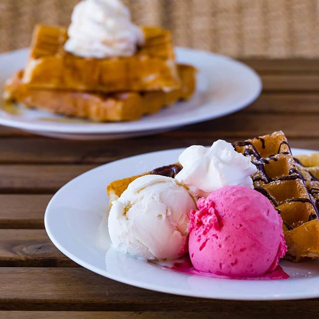 Raise your hand if you're dreaming of waffles with plant-based gelato. Dreams are meant to be lived so come on down and make your order. • • • • • #perthvegan #vegansofperth #vegansofaustralia #vegansofig #waffles #wafflesperth #desserts #dessertsperth #gelatoperth #perthgelato #perthgelatobar #perthdessertbar #perthveganeats