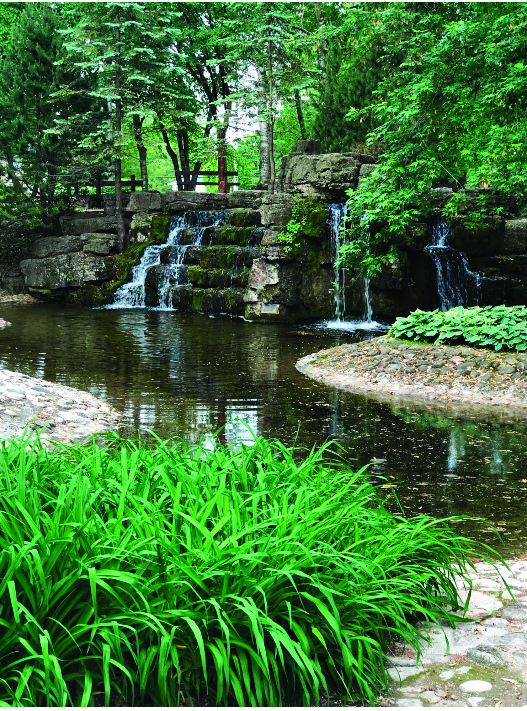 Confederation Park - Adjacent to The Ted Blowes Memorial Pollinator Peace Garden are the beautiful waterfalls and gardens located in Confederation Park.