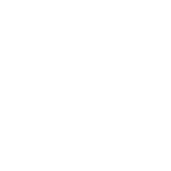 VISION 2.png