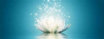 radiant flower.jpg