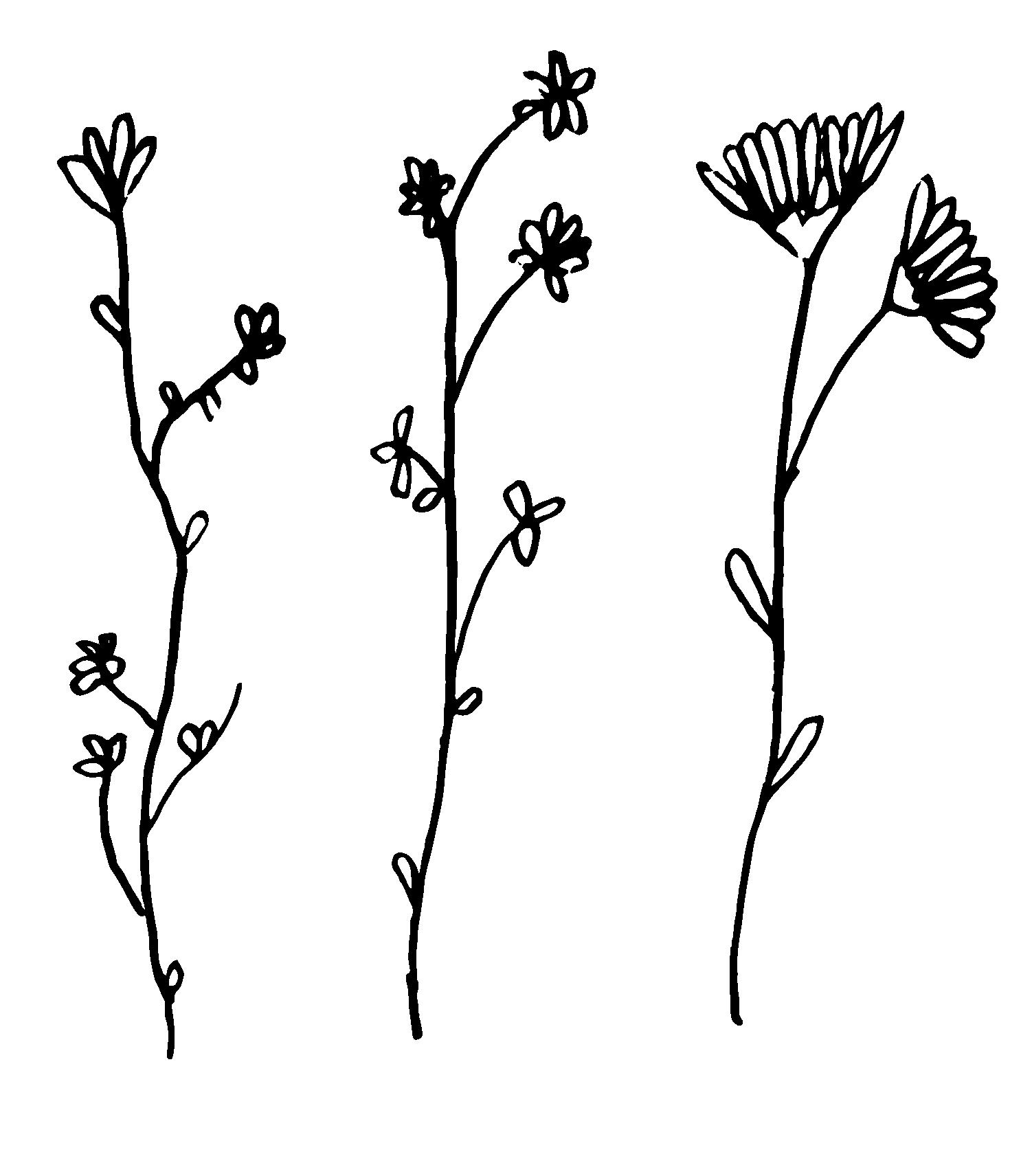 wildflowers 2.png