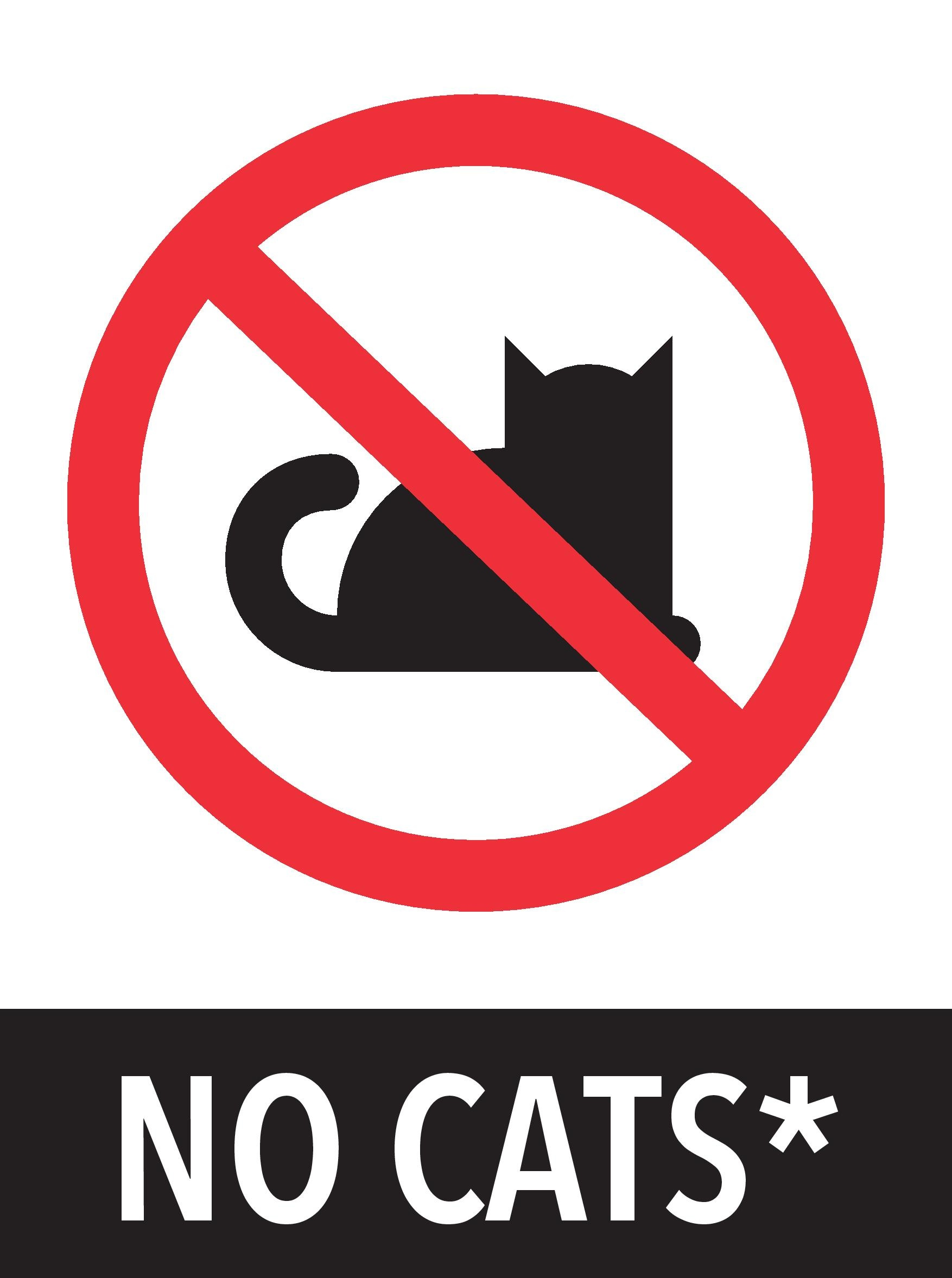 No+cats.jpg