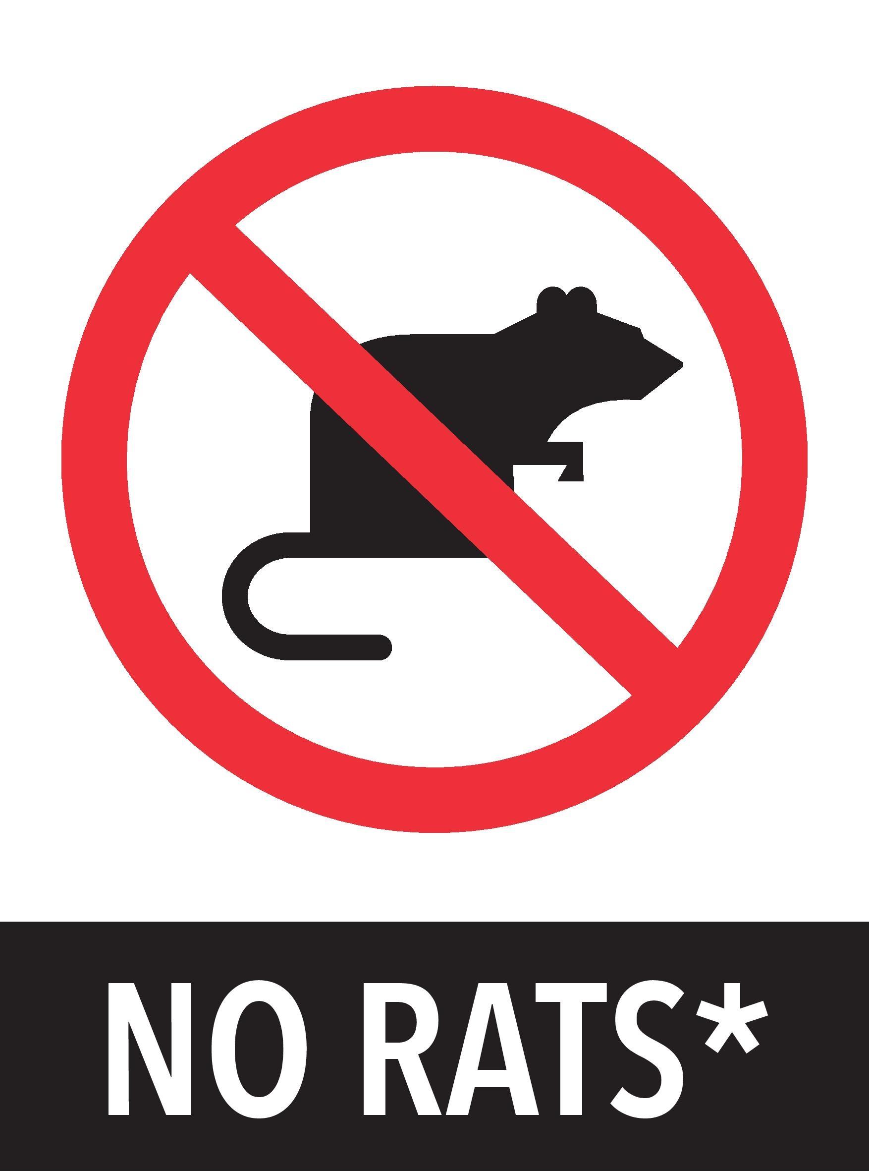 No+rats.jpg